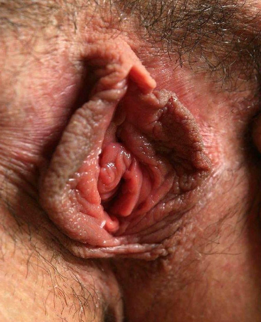 Hardcore Pussy Eating Close Up